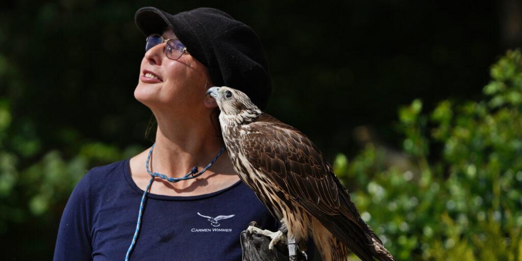 Falknerin Carmen Wimmer mit Sakerfalke Astrid